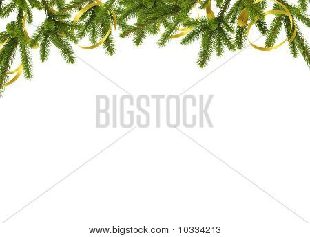 Card For The Holiday With Branches On The White Background