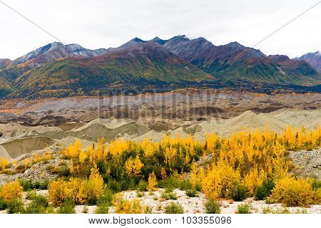 Kennicott Sediment Glacier Wrangell St Elias Mountains Autumn Color
