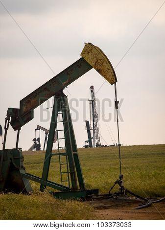 Drilling for liquid gold