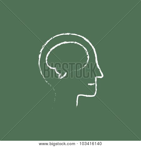 Human head with brain hand drawn in chalk on a blackboard vector white icon isolated on a green background.