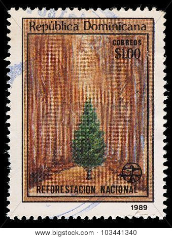 Dominican Republic Postage Stamp Showing A Tree In A Forest For The National Reforestation Campaign