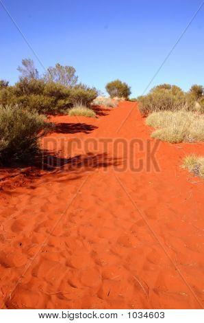 Australia Outback 8