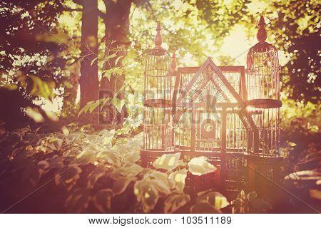 Ornate victorian bird case outside.
