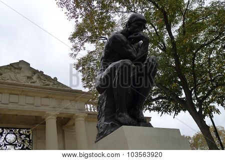 The Thinker under a Tree
