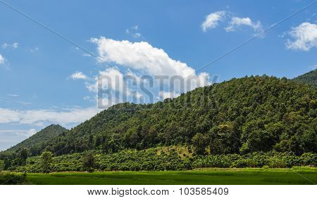 View Of The Majestic Layer Mountains In Thailand
