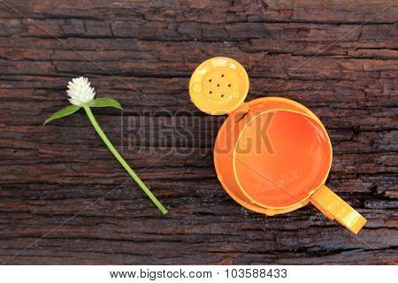 Orange Watering Can And Globe Amaranth