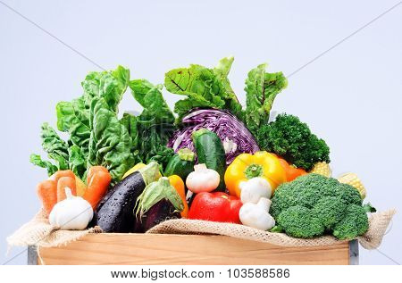Crate of raw fresh vegetables from local farmers market isolated on light background, spinach kale beetroot aubergine broccoli peppers garlic aubergine capsicum garlic variety of healthy produce