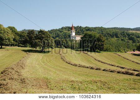 Landscape Near Ilirska Bistrica