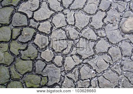 Cracked Mud Texture