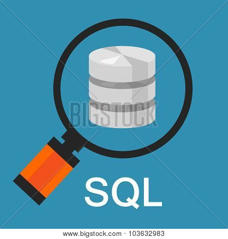 sql structured query language database search data code