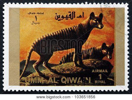 Postage Stamp Umm Al-quwain 1972 Tasmanian Wolf