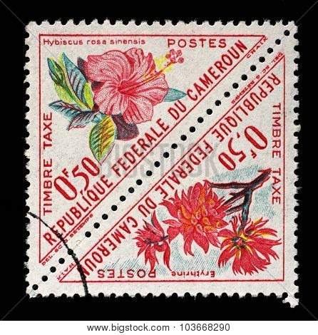 CAMEROON - CIRCA 1963: A stamp printed in Cameroon shows flowers with the inscription Hibiscus rosa sinensis and Erythrina, from the series Flowers, circa 1963