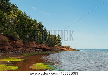 Beach At Belmont Provincial Park