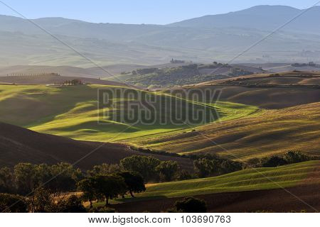Tuscany landscape at sunrise. Typical for the region tuscan farm house, green hills, vineyard. Italy poster