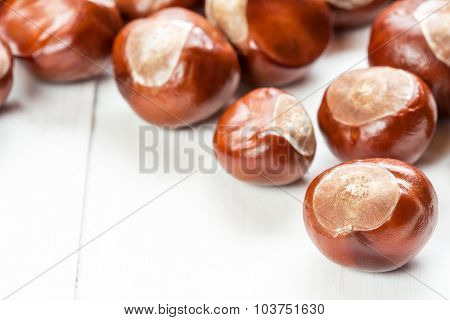 Fruit Chestnut On A Wood Background