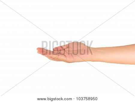 Right Hand Of A Man Act To Hold Card Or Mobile Phone.