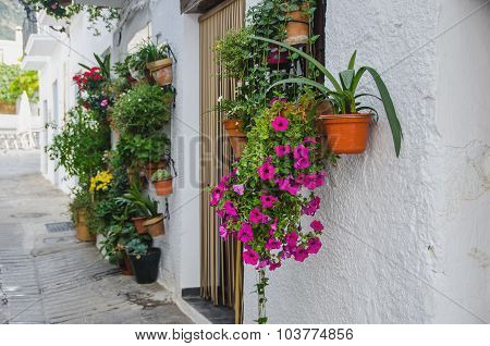 House Entrance With Plantpots Capileira