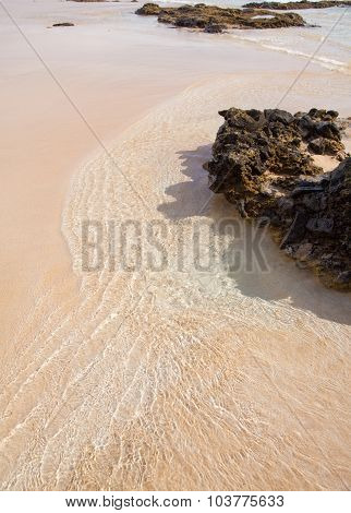 Fuerteventura, Canary Islands, Playa Del Castillo