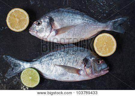 Two Fresh Raw Doradas With Lemon On The Dark Table