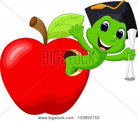 A worm in the red apple