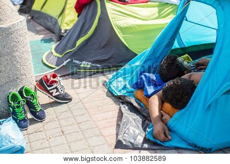 KOS, GREECE - SEP 28, 2015: Unidentified refugees sleep in tents. More than half are migrants from Syria, but there are refugees from other countries -Afghanistan, Pakistan, Iraq, Iran, Mali, Eritrea.