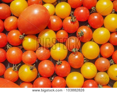 Cherry Tomato Vegetables Background