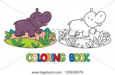 Coloring book of little funny hippo