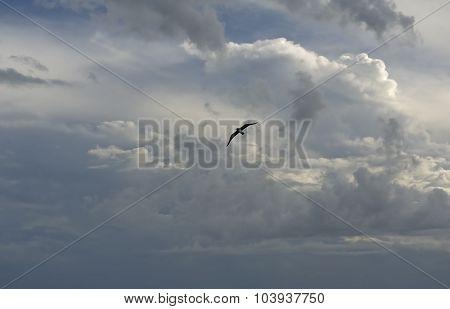 Cloudscape Outer Banks North Carolina