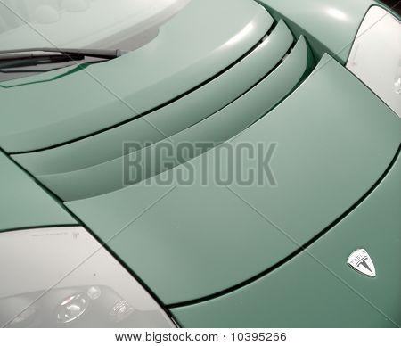 Tesla Roadster Carhood