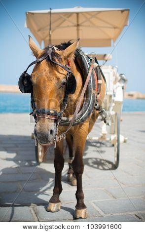 Horse And Vintage Carriage On The Pier Near The Sea.