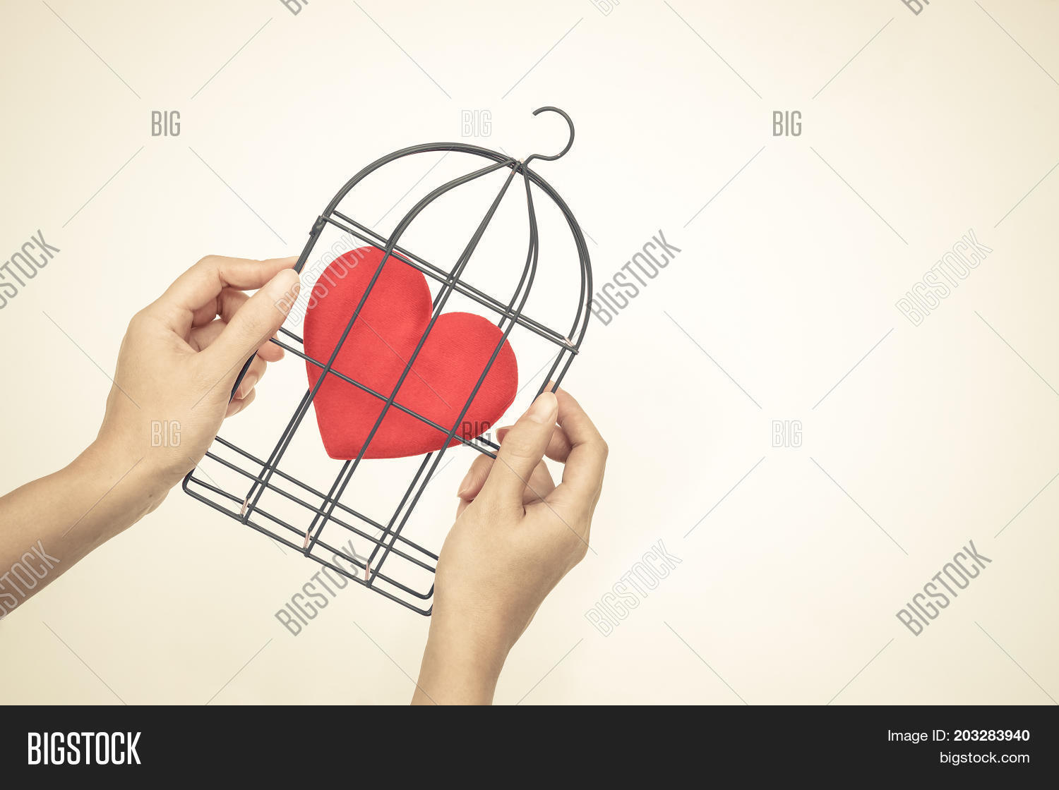 Hands Holding Bird Image Photo Free Trial Bigstock Heart Diagram A Cage With Red Inside Forbidden Love Concept