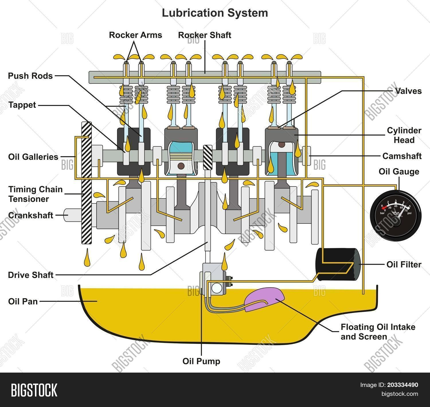 Vehicle Lubrication System infographic diagram showing cross section of car  engine with all parts and path