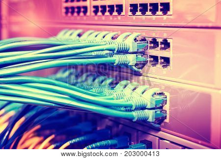 Ethernet Cables Connected to Internet Switch.