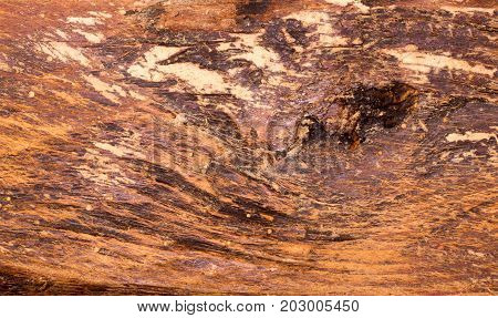 Old Wood Planks Background.
