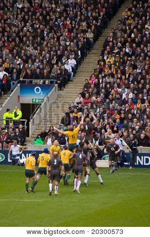 TWICKENHAM LONDON - NOVEMBER 13: Lineout at England vs Australia Investec Rugby Match on November 13, 2010 in Twickenham, England.