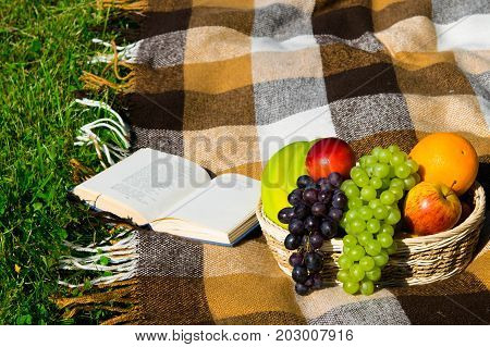 In the park on the lawn on the plaid plaid lies a book and a basket of fruit