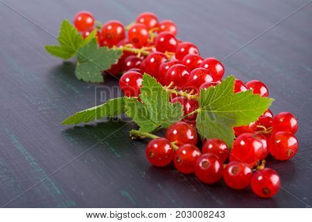Branches of a red ripe currant lie on a black background