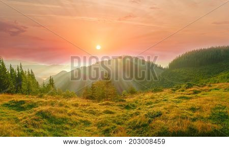 Carpathian landscape with mountain meadow in the foreground against the background of mountain range overgrown with forest and sky with rising sun and clouds