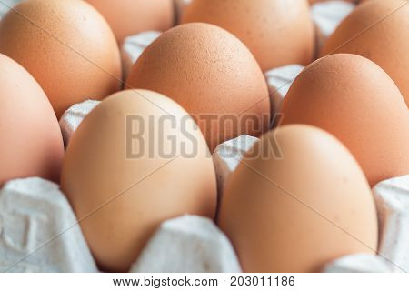 Fresh eggs in egg rack on wood table. Prepare chicken eggs for cooking or bakery on rustic wood table. Close up with selcetive focus concept fresh eggs with macro concept for background or wallpaper. Fresh eggs ready to use for cooking.