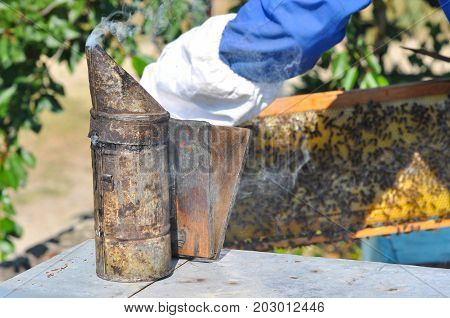Bee smoker on beehive in apiary. Beekeeper control bees with a smoker