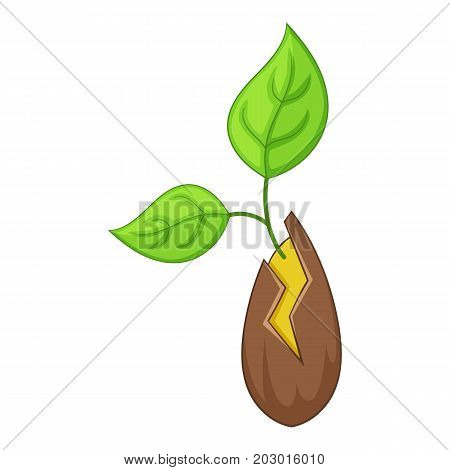 Seed sprouting icon. Cartoon illustration of seed sprouting vector icon for web