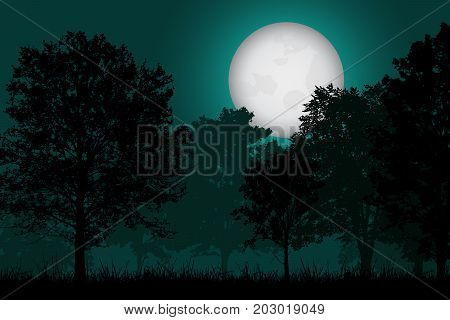 Vector realistic illustration of a deciduous forest with grass under a night sky with a full moonlit moon