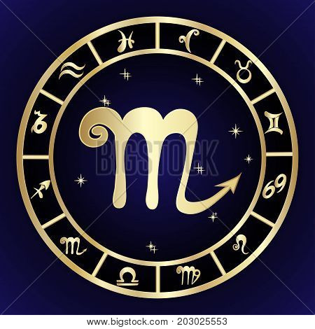 Scorpio zodiac sign in oval frame vector Illustration. Contour icon.
