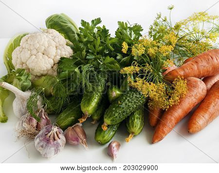 Vegetables of summer harvest cauliflower cucumbers carrots garlic dill parsley dill inflorescences lie on a white background on a table