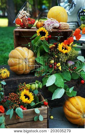 autumn still life of pumpkin corn sunflower tomato on wooden boxes in the Park. The concept of a farmers ' party.