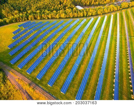 Aerial view to solar power plant in pine forest. Industrial background on renewable resources theme.