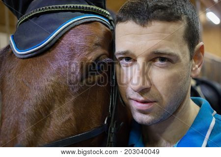Handsome man and brown horse in harness are in stable, close up