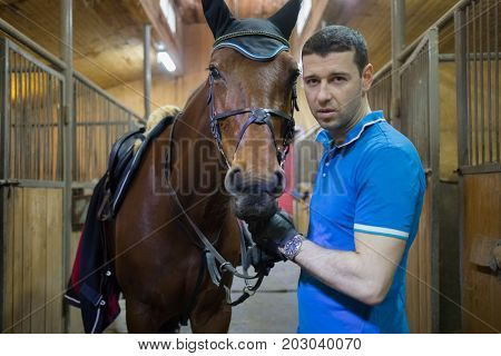Handsome man in blue stands with brown horse in harness in stable, focus on horse
