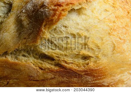 Close Up Of Bread Loaf Crust