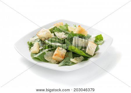 caesar salad in plate isolated on white background